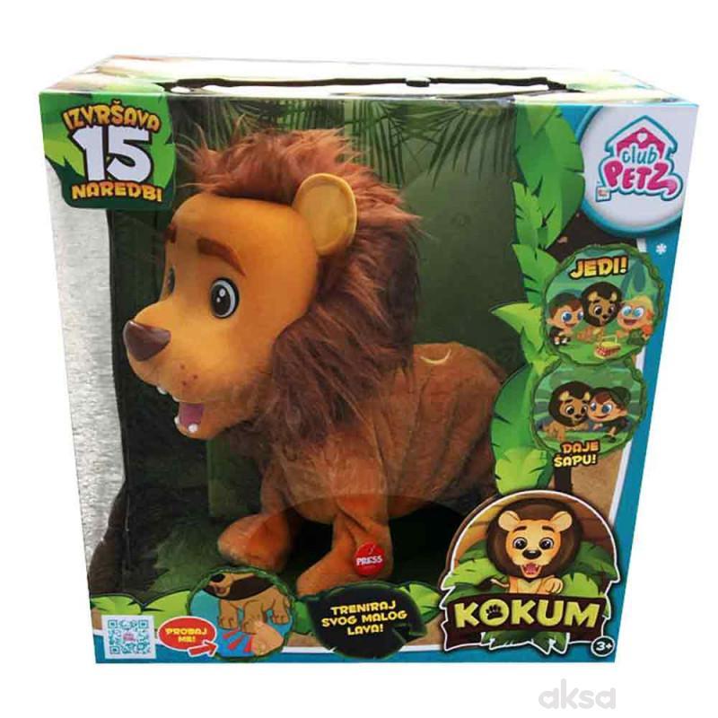 Kokum interaktivni lav