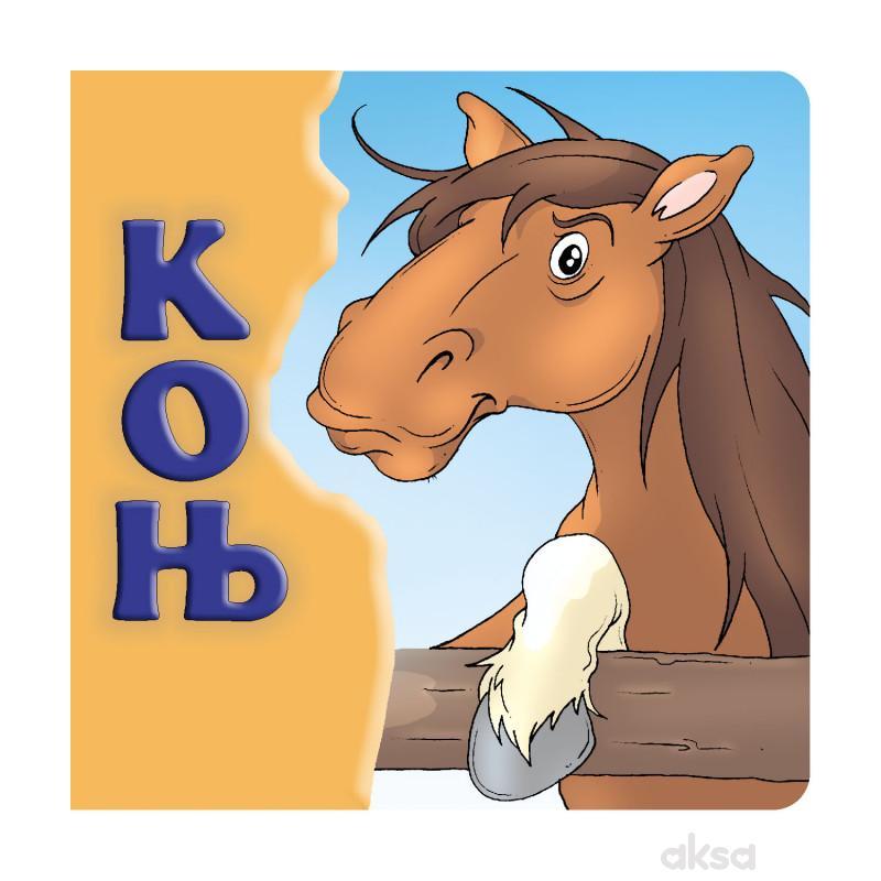 Konj, tvrde slikovnice 16x16 ćirilica